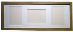 multi - aperture picture frame with mount